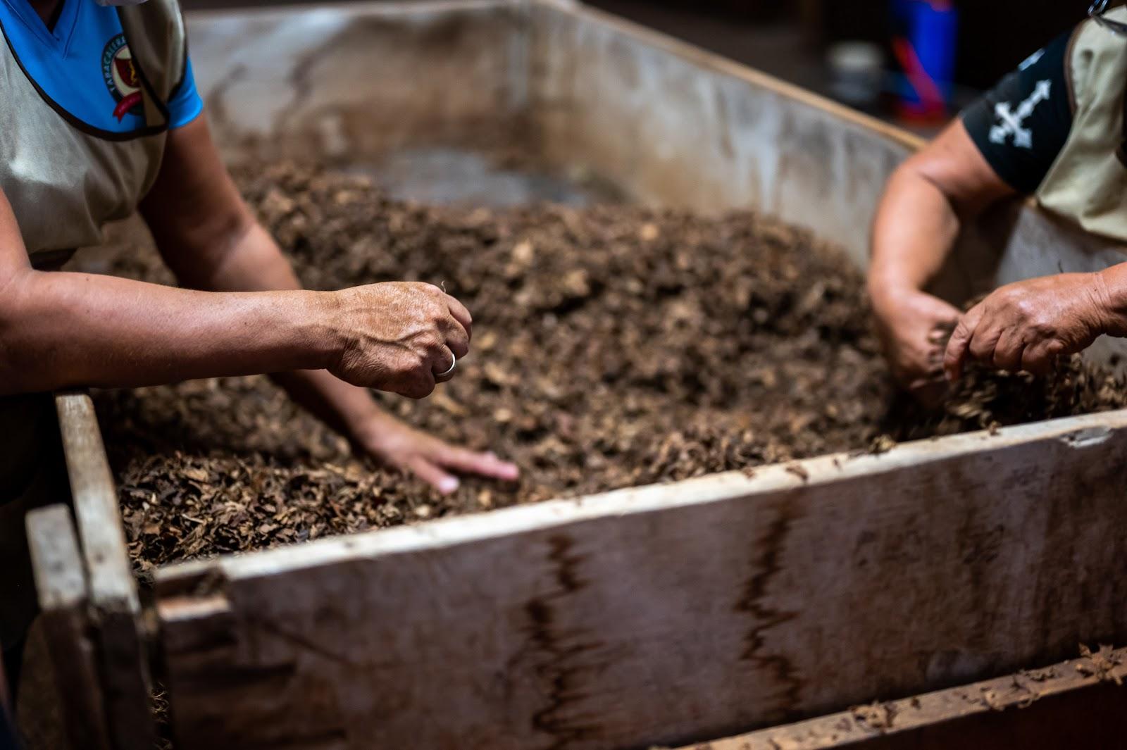 composting-in-a-veggie-garden
